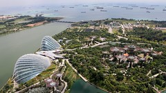 IMG_2499 (Pataclic) Tags: cloudforest flowerdome garden gardenbythebay jardin singapour