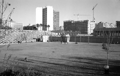 190104_Parc_Central_012 (Stefano Sbaccanti) Tags: bw blackandwhite bn parccentral valencia minox35gl kentmere400 bellinihydrofen analogicait analogue analogico argentique spain spagna selfdeveloped 2019 city