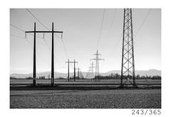 Electricity (Aljaž Anžič Tuna) Tags: electricity field cords tower line infinity photo365 project365 onephotoaday onceaday 365 35mm 365challenge 365project nikkor nice naturallight nikon nature nikon105mmf28 nikond700 dailyphoto day d700 105mmf28 f28 bw blackandwhite black white blackwhite beautiful