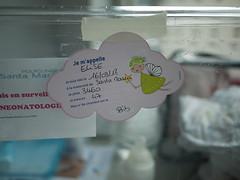 Naissance d'Élise (Dahrth) Tags: gf1 lumix20mm microquatretiers bébé baby maternité maternity