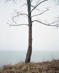 (mariuszlemiecha) Tags: fujigw670iii kodakportra400 epsonv700 balticsea landscape