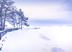 Silence (Joni Salama) Tags: lumi talvi luonto aamu espoo westend suomi uusimaa finland fi nature winter landscape morning