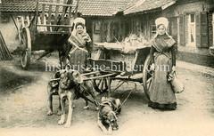 X990015 arbeitshund belgien (stadt + land) Tags: hunde hund bilder fotos arbeitshund historisch früher aufgabe transport alte fotografien