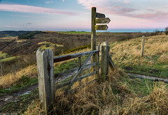 Sutton Bank gate (Donard850) Tags: northyorkmoors suttonbank gate grass signpost sky sunset path