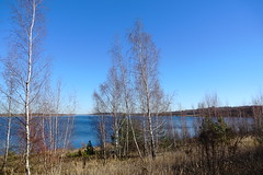 DSC04722 (bluesevenxp) Tags: geiseltalsee mücheln marina lake see ufer floating