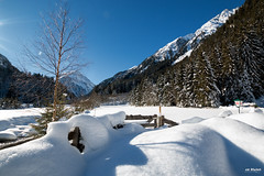 Soft snow in the valley (Piotr Grodzicki) Tags: alps austria tirol mountains winter sunshine