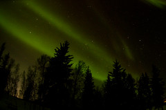 March Madness-109 (juan_guthrie) Tags: northernlights yellowknife nwt aurora