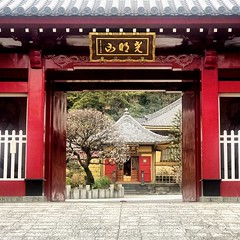 All Photos-6676 (vincentvds2) Tags: temple 興福寺 toufukuji koganecho 横浜 yokohama akamoncho tofukuji