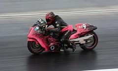 Pink Tutu_3747 (Fast an' Bulbous) Tags: suzuki hayabusa turbo fast speed power acceleration drag strip race track moto motorcycle motorsport nikon panning outdoor bike biker santa pod