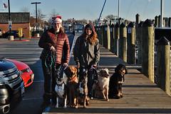 Annapolis - 25 Days of Christmas (samd517) Tags: annapolis city dock west street red green 25 days christmas leash free living day training doberman maltese rottweiler australian shepherd american bernadoodle