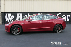 Tesla Model 3 with 20in TSW Bathurst Wheels and Michelin Pilot Sport 4S Tires (Butler Tires and Wheels) Tags: teslamodel3with20intswbathurstwheels teslamodel3with20intswbathurstrims teslamodel3withtswbathurstwheels teslamodel3withtswbathurstrims teslamodel3with20inwheels teslamodel3with20inrims teslawith20intswbathurstwheels teslawith20intswbathurstrims teslawithtswbathurstwheels teslawithtswbathurstrims teslawith20inwheels teslawith20inrims model3with20intswbathurstwheels model3with20intswbathurstrims model3withtswbathurstwheels model3withtswbathurstrims model3with20inwheels model3with20inrims 20inwheels 20inrims teslamodel3withwheels teslamodel3withrims model3withwheels model3withrims teslawithwheels teslawithrims tesla model 3 teslamodel3 tswbathurst tsw 20intswbathurstwheels 20intswbathurstrims tswbathurstwheels tswbathurstrims tswwheels tswrims 20intswwheels 20intswrims butlertiresandwheels butlertire wheels rims car cars vehicle vehicles tires