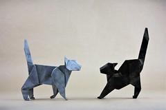 Cats - Makoto Yamaguchi (pierreyvesgallard) Tags: origami makoto yamaguchi cat paper papercraft
