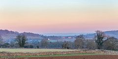 Cotswolds (Geraldine Curtis) Tags: cotswolds rural scene kite bird birdofprey gloucestershire upperslaughter
