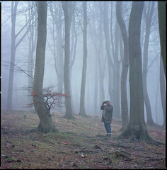 "Viorel ""Pops"" (steve-jack) Tags: hasselblad 501cm 150mm kodak ektar 100 film 120 6x6 medium format wood woodland forest fog mist trees tetenal c41 kit epson v500"