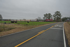 Grazing (ajketh) Tags: rjcs rj corman carolina lines emd gp38 gp382 3812 3813 7710 cows pasture farm country highway road cloudy sc south chadbourn tabor city nc north freight train railroad
