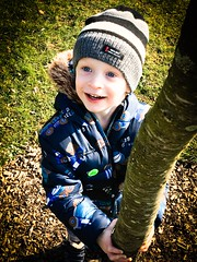 William (MacBeales) Tags: iphon apple child portrait arboretum hilliers winter tree toddler son