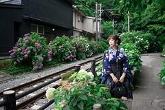 2017  夏 紫陽花443 (Miyako_Reiko) Tags: miyako流 2017 攝影 日本 夏 紫陽花 lolita fashion miyakoreiko