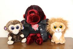 Plush Animal Collection (Tamara Tarasiewicz) Tags: plushgorilla plushmonkey biker wildthing dandeemonkey gorilla dandeegorilla beaniebabies beaniemonkey beanielion ty plushanimals toys plush