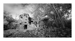 Sabacche 1 (Sandra Herber) Tags: infrared maya mayan mexico ruins sabacche7 yucatan