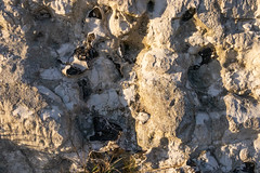 Chalk and Flint - White Cliffs of Dover (BeerAndLoathing) Tags: 2018 december englandtrip england sunset uktrip whitecliffs canon kent sea 77d trip winter harbour winter2018 uk dover canoneos77d sigma18300mm
