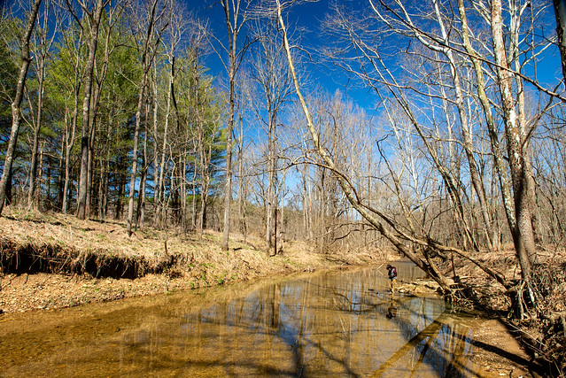 Hoosier National Forest - Anderson River - Birdseye Trail - March 23, 2019