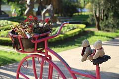 mKokoKiki at Da Lat garden centre (NengHetty) Tags: dalat vietnam gardencentre flowers koko kiki bears toys