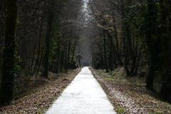 After the rain (geraldineh.dutilly) Tags: france dordogne bike trail light rain