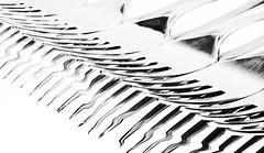 never say perfect (ELECTROLITE photography) Tags: neversayperfect perfect fork gabeln fourchette highkey blackandwhite blackwhite bw black white sw schwarzweiss schwarz weiss monochrome einfarbig noiretblanc noirblanc noir blanc electrolitephotography electrolite