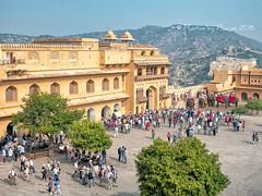 Amer Fort, Jaipur (Julie H. Ferguson (Photos by Pharos)) Tags: travel india rajasthan jaipur amberfort courtyard elephants crowds mountain