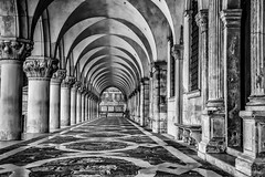 Is There Any Body Out There ? (photofitzp) Tags: bw blackandwhite dogespalace italy venice