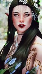 Progress - Artemis Follower (Thunderstorm95) Tags: skyrim character elf follower portrait