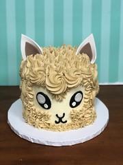 IMG_3670 (backhomebakerytx) Tags: back home bakery backhomebakery cake birthday alpaca cute animal buttercream