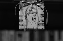 Symphony in black and white (Baubec Izzet) Tags: baubecizzet pentax bokeh blackandwhite music