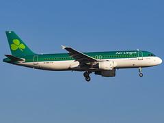 Aer Lingus | Airbus A320-214 | EI-DEH (MTV Aviation Photography) Tags: aer lingus airbus a320214 eideh aerlingus airbusa320214 londonheathrow heathrow lhr egll canon canon7d canon7dmkii