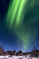 Z19_0620 LT (Zoran Babich) Tags: lapland lappi suomi finland winter auroraborealis northernlights landscape