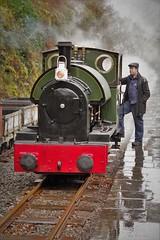 perfectly posed (Sundornvic) Tags: steam train locomotive rail railway wales mist rain green preservation heritage