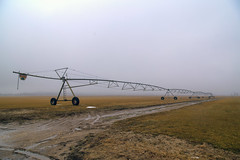 Foggy Day (milfodd) Tags: february 2019 fog foggy irrigationequipment