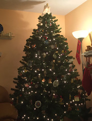 2018 YIP Day 358: Posey tree (knoopie) Tags: 2018 december iphone picturemail christmastree christmas posey christmaseve 2018yip project365 365project 2018365 yiipday358 day358