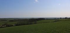 brill walk-190401-17.jpg (Phil Mercer-Kelly) Tags: sunshine spring radiooxford bbc counyryside blossom philmercer getactive brill sheep buckinghamshire europe england uk oxfordshire views bucks health windmill walker oakley walk