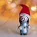 Season's Greetings, humans! (Macro Mondays - Holiday Bokeh)