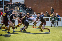 PGRFC v Huddersfield RUFC (archi-image) Tags: hoppers rfu rugga preston lancashire huddersfield rugby 4g