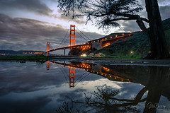 Golden Pond II (sberkley123) Tags: sausalito california goldengatebridge nikon marin z7 trees reflections fortbaker marinheadlands sanfrancisco usa 1424mm fog