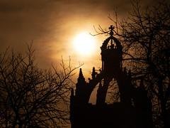 Winter Light (PeskyMesky) Tags: aberdeen kingscollege kingscollegeaberdeen kings winter light silhouette shadow scotland tree sun canon canon5d eos architecture university february 2019