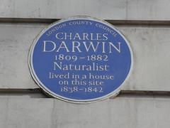 UK - London - Bloomsbury - Gower Street - UCL Darwin Building - Blue plaque for Charles Darwin (JulesFoto) Tags: uk london england southbankramblers bloomsbury darwinbuilding ucl charlesdarwin blueplaque