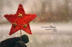 étoile (Chocolatine photos) Tags: étoile rouge hiver douceur photo photographesamateursdumonde pdc pastel neige makemesmile minimaliste flickr nikon nature