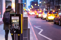 Wait and See (DobingDesign) Tags: streetphotography bokeh colours bluehour lights traffic citylights london londonstreets wait crossing roadmarkings road cars trafficqueue pelicancrossing pedestrian nightcolours evening dusky depthoffield