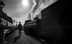 GWR Pannier 7714, 1930 (Dave.Miles) Tags: 7714 gwrpannier7714 svr bridgnorth severnvalley steam steamtrain olympus olympusom10 ilford ilfordfp4plus ilfotecddx film filmisnotdead 35mm 35mmfilm analogue
