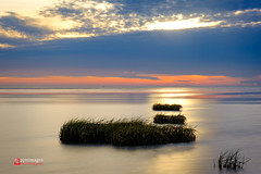 The Ribble Estuary (@pjmimages) Tags: resort england sunset lytham evening sea fyldecoast beach fylde wet lancashire coastal grasses stannes seascape riverribbleestuary coast uk seaside