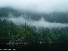 Wilderness (lorinleecary) Tags: fjord trees fog alaska waterfalls reflections