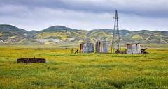 Time Passed (David Recht) Tags: carrizoplain unitedstates us wildflowers super bloom windmill old hills color yellow plate tectonics